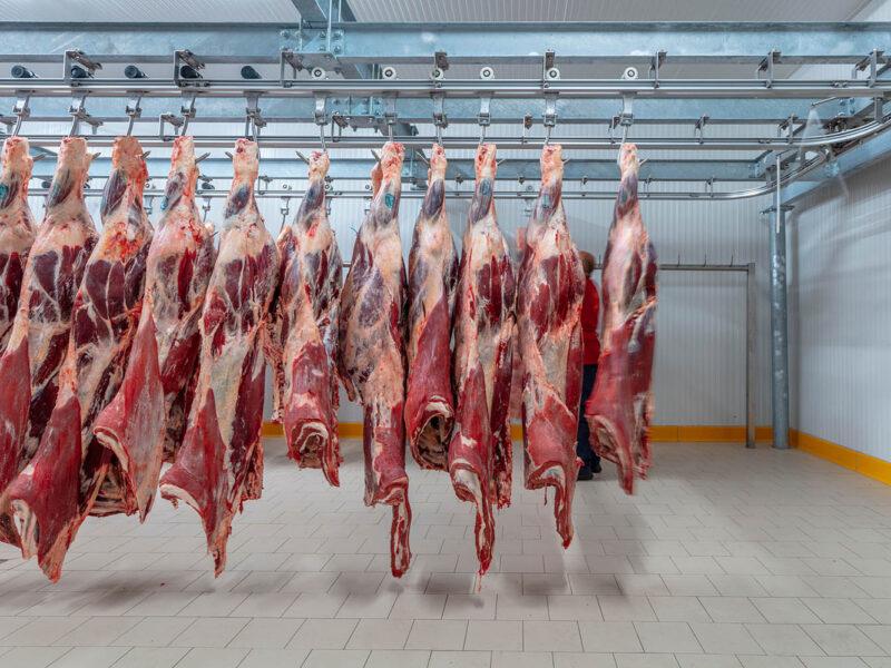 vleesverwerking-driessche